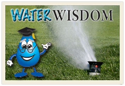 Navigate to Water Wisdom